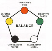 Balance - The five systems